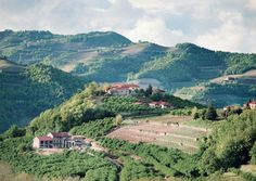 Piedmont, Italy Travel Guide: In the Magazine: bonappetit.com