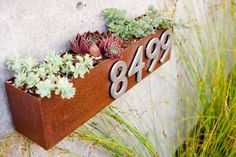 Rustic Metal Planter with Succulents and House Numbers