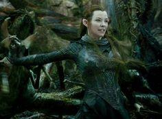 elfs vs spiders the hobbit - Google zoeken