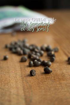 Le guide des semences et semis - La ferme aux 56 mille idées Permaculture, Guide, Mille, Lawn And Garden, Farm Gate