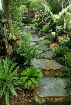 26 Perfect Side Yard Garden Design Ideas And Remodel. If you are looking for Side Yard Garden Design Ideas And Remodel, You come to the right place. Here are the Side Yard Garden Design Ideas And Rem. Amazing Gardens, Beautiful Gardens, Beautiful Flowers, Side Yard Landscaping, Landscaping Ideas, Tropical Backyard Landscaping, Stone Landscaping, Tropical Garden Design, Small Tropical Gardens