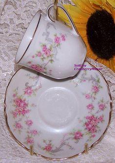 Pink Rose Tea Cup & Saucer Lorenz #Hutschenreuther Selb #Bavaria #Germany #Richelieu Demitasse #Vintage Mid Century 1960s #German #Designer #Gift  #MidCentury