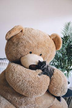 Jumbo Teddy Bear, Cute Teddy Bears, Bear Wallpaper, Valentines, Kawaii, Women's Fashion, Wallpapers, Dolls, Random