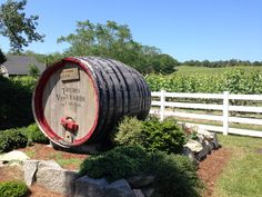 Truro Vineyards of Cape Cod in North Truro, MA. Stop by for a tour and wine tasting on your way to Provincetown, or simply for a relaxing afternoon activity