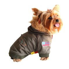 Anima Green Dog Bomber Jacket - Let them know who's top gun with this stylish jacket. It comes fully equipped with a furry hoodie, snap-on buttons, and U.S. flag patch for patriotic pups. Acrylic fur hood lining. Satin over quilted polyester. - http://www.petco.com/shop/en/petcostore/anima-green-dog-bomber-jacket