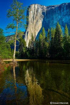 Yosemite: Reflection of El Capitan's Massive Rock Face