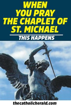 Be inspired with daily Christian living resources and Bible study to encourage your walk with Jesus Christ. Chaplet Of St Michael, St Michael Prayer, Saint Michael, Catholic Herald, Catholic Saints, Novenas Catholic, Archangel Prayers, Miracle Prayer, I Believe In Angels