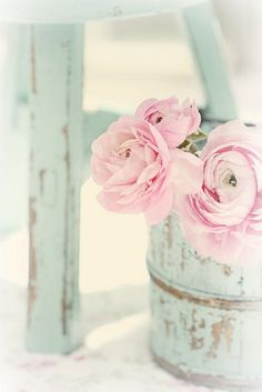 so pretty... distressed furniture and bucket and flowers.