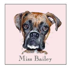 miss bailey  Illustration/Zebo Studio