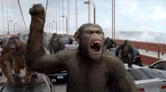 Rise of the Planet of the Apes Sequel Shooting This Summer... YES!!!