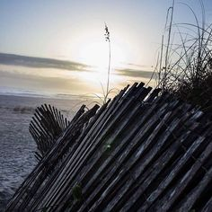 #beautiful #staugustinebeach #januarymorning #seaoats #visitstaugustinedotcom #visitsta #visitstaugustine #Repost @newmanphotographs  #staugustinebeach #staugustine #stauggie #sunrise_sunsets_aroundworld #oldestcity #daytonohio #daytonohiophotographer #daytonohiophotography #dayton #ohio #ohiophotographer #ohiophotographers