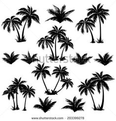 Palm Tree Silhouettes Vector Free   123Freevectors
