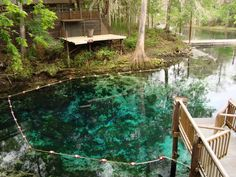 The turquoise-colored water of Fanning Springs State Park.