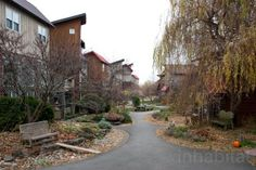 EcoVillage at Ithaca Offers Sustainable Living in a Community Setting