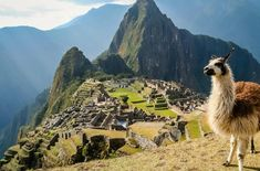 Apr 2018 - WHEN it comes to Peru, three obvious destinations — Machu Picchu, Lima, and Cusco — never fail to make every top to-do list. Conquistador, Uniworld River Cruises, National Geographic, Family Friendly Cruises, Machu Picchu Travel, Peru Travel, Inca, Amazon Rainforest, All Inclusive Resorts