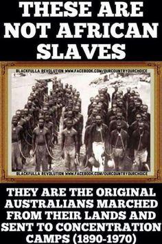 Aboriginal holocaust in the 1800's