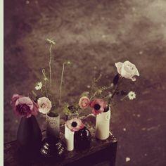bud vase anemones