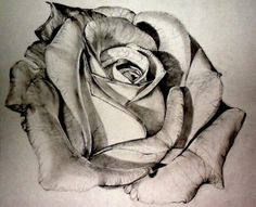 I think I& found the style for my rose tattoo, and this is it! I think Ive found the style for my rose tattoo, and this is it! Future Tattoos, New Tattoos, Tatoos, Illustration Manga, Rosen Tattoos, Sternum Tattoo, Full Sleeve Tattoos, Skin Art, Beautiful Tattoos