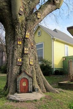 outdoor house trees