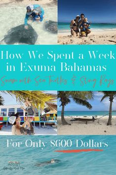 How We Spent a Week in the Bahamas for Only 600 Bucks - Do you want to have a fun family vacation on a budget? We took a week-long Bahamas vacation for onl - Bahamas Family Vacation, Bahamas Honeymoon, Best Island Vacation, Exuma Bahamas, Florida Vacation, Vacation Ideas, Bahamas Trip, Vacation Travel, Nassau