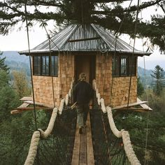 Come take a tour of our dream house - an actual treehouse.