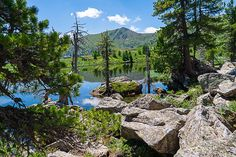 Wanderlust, Paradise Found, Mount Rainier, Austria, To Go, Hiking, Budget, Mountains, Places