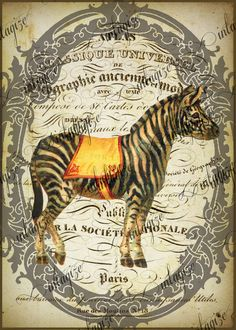 Instant Art Original Print French Circus Zebra Ready for Framing, Quilt Making, Etc-Digital Download. $3.25, via Etsy.