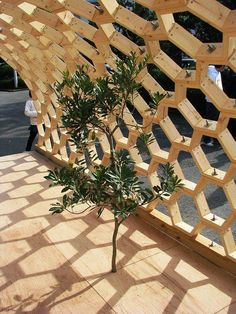 Pergola Kits Attached To House Easy Woodworking Projects, Woodworking Plans, Camping Am Meer, Dome House, Geodesic Dome, Built In Bookcase, Exterior Design, Photo Wall, Backyard