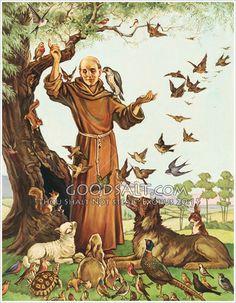 Francis Of Assisi, St Francis, Catholic Saints, Patron Saints, Patron Saint Of Animals, Religion, All About Animals, Christian Art, Nature Animals