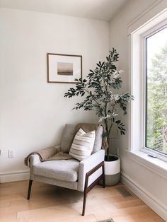 Cozy reading nook is the perfect way to fill that empty corner in your home | olive tree and accent chair Grey Accent Chair, Grey Chair, Accent Chairs, Casual Mom Style, Olive Tree, Cozy Living Rooms, Reading Nook, Grey Fabric, Empty