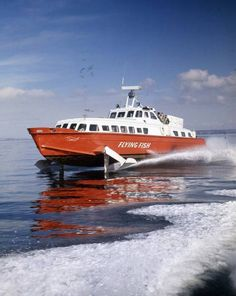 Flying Fish 65 Hydro Foil Boat