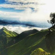 Abang tungguin disini dek :v #mtmerbabu  #explore #explorejateng  #idpendaki #pendakiindonesia #pendakikeren #indonesia #instapendaki #mtma #hiking  #adventure by ulil_o9