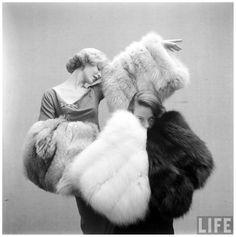 Fashions -Long Haired Furs Life Magazine, Gordon Parks, 1952