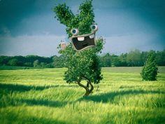 RABBIDS tree