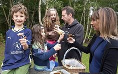 FREE Wild Mushrooms - Mushrooms tasty, healthy and nutritious Follow our free guides Join us on Twitter and Facebook