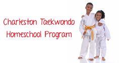 Taekwondo progrom for homeschool families.  Charleston, South Carolina  Mount Pleasant, South Carolina  Mt. Pleasant South carolina