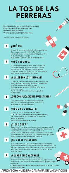 Clinica Veterinaria Burjassot 961131539 - Centro Veterinario Bitxos - English Spoken - Exoticos: La tos de las perreras: Infografía