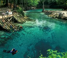 Blue Springs State Park, 40 minutes from Orlando, is a winter favorite among scuba divers, snorkelers, and manatees alike.
