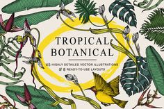 Tropical Botanical Collection by Feanne on @creativemarket