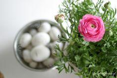 http://lifestyleinspiracje.blogspot.com