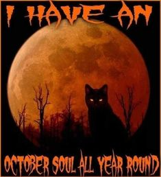 Let's enjoy the Funny Halloween Memes Goes Viral on Social Media. Now time for Halloween, everyone in the whole world needs to celebrate Halloween Scarecrow, Halloween Prints, Creepy Halloween, Vintage Halloween, Fall Halloween, Funny Halloween Memes, Halloween Quotes, Halloween Signs, Samhain