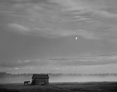 World of wonder: Pentti Sammallahti's black and white photography – in pictures | Art and design | guardian.co.uk