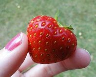Propiedades de las fresas.