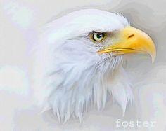Adler Kunst Malerei Adler Weißkopfseeadler Adler von lewfoster