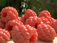 Realistic raspberry render by guismo