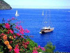 Mediashipcharter.it noleggio barche in Italia - Ebarche.it annunci nautica gratuiti