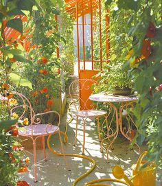 Gorgeous sunny colors with a bright tangerine gate makes your Garden look sunny even on a cloudy day!