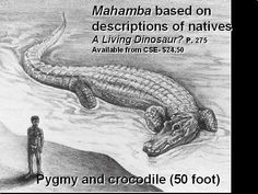 Mahamba is a cryptid rumoured to lurk in the People's Republic of the Congo, around the Lake Likouala swamp region. It is purported to be an enormous crocodile; reaching lengths of up to 50 feet (15 m). Some have speculated that it is a freshwater relic of the mosasaurs; huge, sea-dwelling lizards which were presumed extinct by the end of the Cretaceous period.