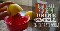 How to Eliminate the Urine Smell in the Bathroom