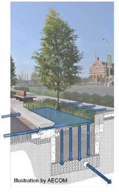 bioretention facility schematic